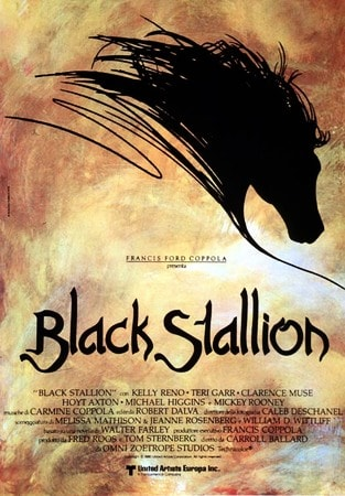 locandina di Black Stallion