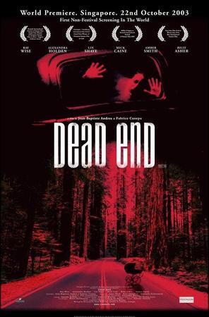 locandina di Dead End - Quella strada nel bosco