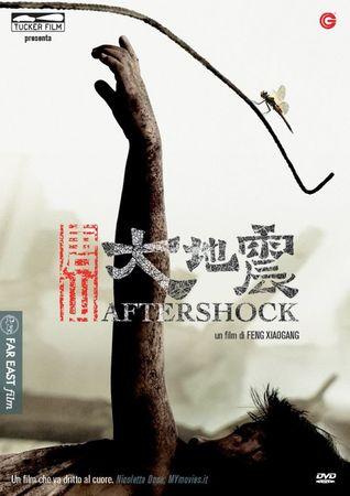 locandina di Aftershock