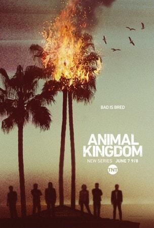 locandina di Animal Kingdom (2016)