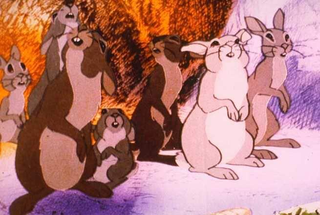 1/4 - La collina dei conigli