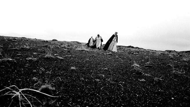 Risultati immagini per il canto degli uccelli film 2008