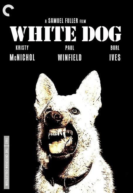 Risultati immagini per cane bianco film