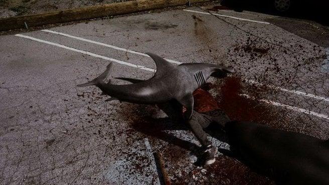 Risultati immagini per sharknado