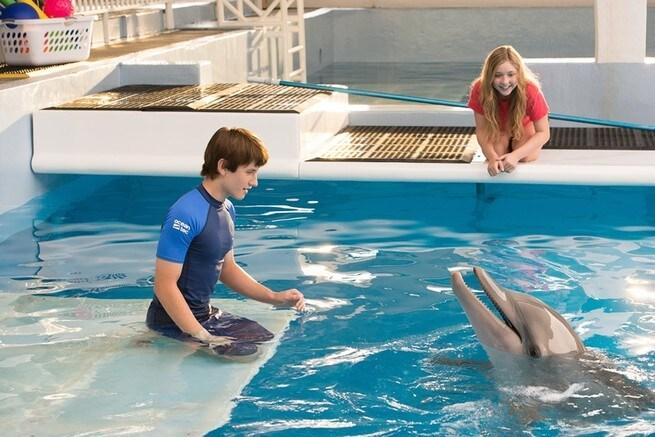 1/7 - L'incredibile storia di Winter il delfino 2
