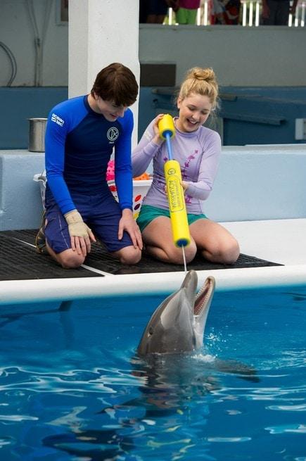 2/7 - L'incredibile storia di Winter il delfino 2