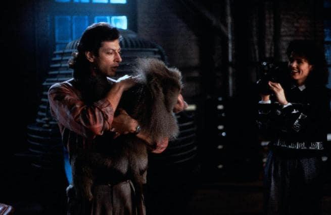 Jeff Goldblum, Geena Davis