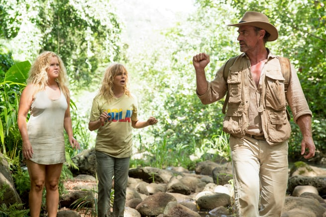 Goldie Hawn, Amy Schumer, Christopher Meloni
