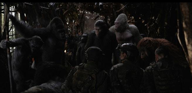 2/7 - The War - Il Pianeta delle Scimmie
