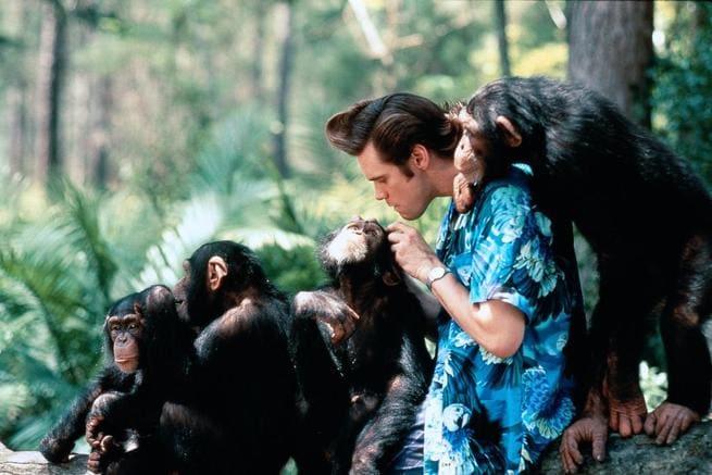 2/7 - Ace Ventura - Missione Africa