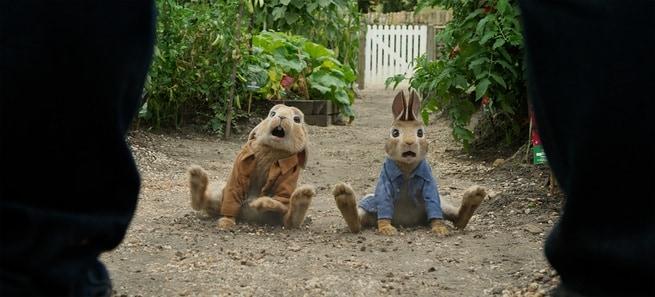 1/2 - Peter Rabbit