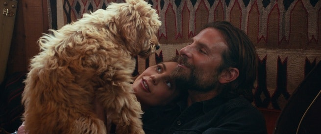 2/6 - A Star Is Born