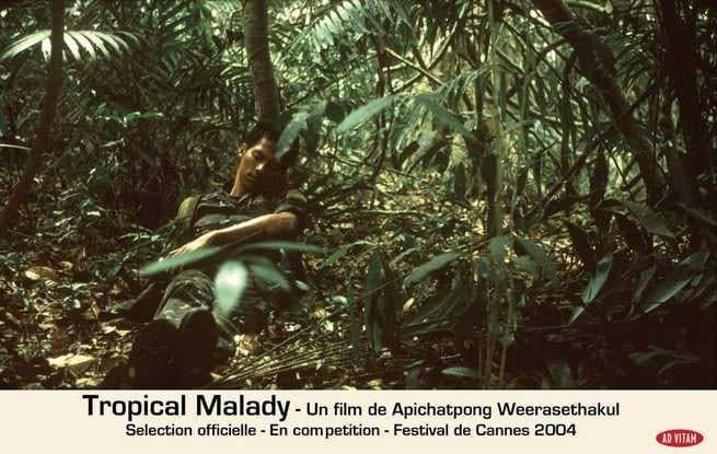 1/2 - Tropical Malady