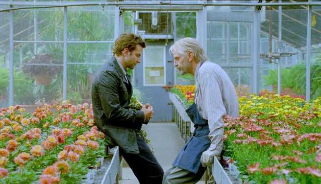Bradley Cooper, Jeremy Irons