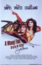 A Wong Foo, grazie di tutto! Julie Newmar