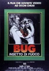 Bug insetto di fuoco