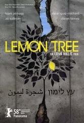 Il giardino di limoni
