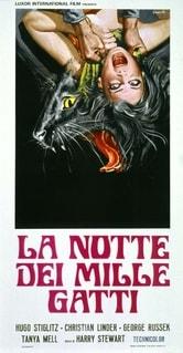 La notte dei mille gatti