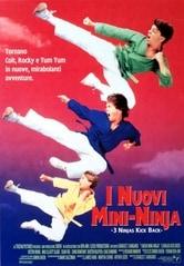 I nuovi mini ninja