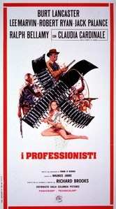I professionisti