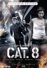 CAT. 8 - Tempesta solare