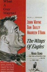 Le ali delle aquile