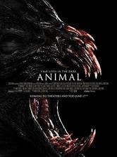 Animal - Il segreto della foresta