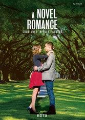 Il romanzo di un amore