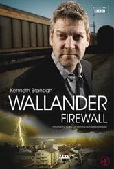 Ispettore Wallander: muro di fuoco