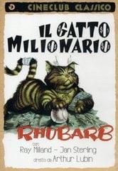 Il gatto milionario