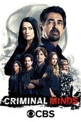 Criminal Mind Stream