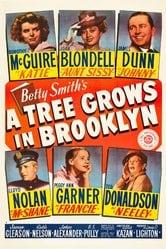 Un albero cresce a Brooklyn