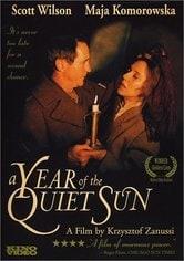 L'anno del sole quieto
