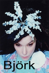 Bjork - The Creative Universe of a Music Missionary