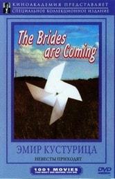 Arrivano le spose