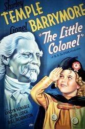 Il piccolo colonnello