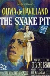 La fossa dei serpenti