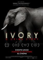 Locandina Ivory. A Crime Story