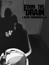 From the Drain