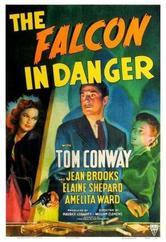 Il falco in pericolo