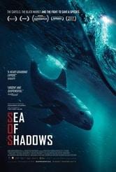 Sea of Shadows: Trafficanti di mare