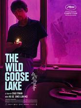 Il lago dei cigni selvatici