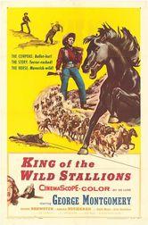 Lo stallone selvaggio