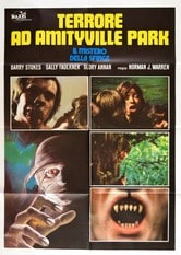 Terrore ad Amityville Park