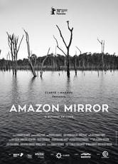 Amazon Mirror