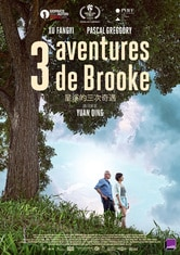 Three Adventures of Brooke