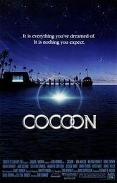 Cocoon. L'energia dell'universo