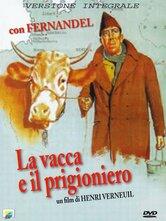 La vacca e il prigioniero