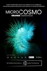 Microcosmo - Grande meraviglia