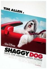 Shaggy Dog - Papà che abbaia non morde
